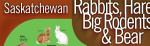 SWF poster - Saskatchewan RHBRB
